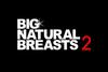 ランク10国特別監修 BIG NATURAL BREASTS2